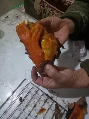 山东德州夏津县烟薯25 红皮 3两以上