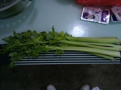 山西省运城市夏县美国西芹 60cm以上 大棚种植 0.5~1.0斤