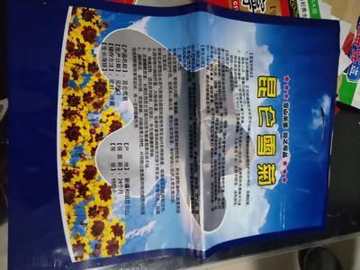 河北沧州东光县天紫二号八月瓜 种植 60g以下