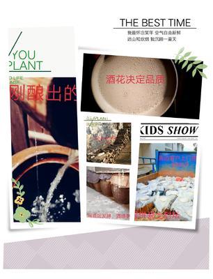 江西抚州崇仁县谷酒 50度以上 5年以上