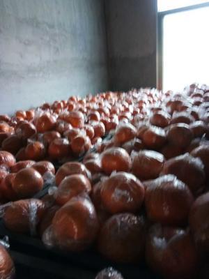 这是一张关于纽荷尔脐橙 65 - 70mm 4-8两的产品图片