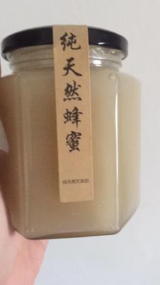 广东深圳福田区土蜂蜜 玻璃瓶装 100% 2年以上
