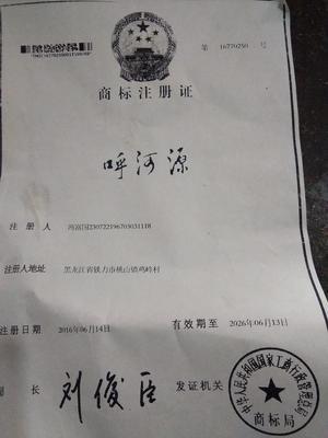 河北沧州黄骅市椴树蜜 塑料瓶装 100% 2年以上