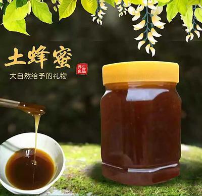 甘肃陇南武都区土蜂蜜 塑料瓶装 100% 2年以上