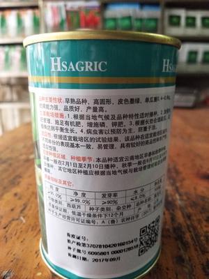 这是一张关于西葫芦种子的产品图片
