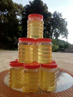 湖南长沙岳麓区洋槐蜂蜜 桶装 90%以上 2年以上