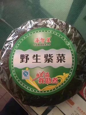 河南省郑州市金水区霞浦紫菜