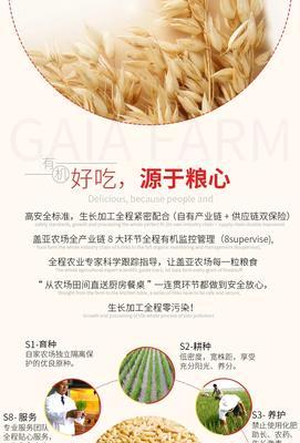 河北省张家口市万全县燕麦胚芽米