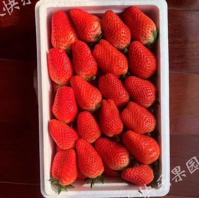 山东烟台芝罘区章姬草莓 40克以上