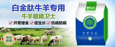 上海闵行区微生物饲料添加剂