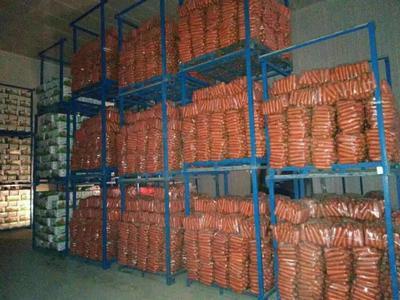 河南省开封市通许县三红胡萝卜 15cm以上 3两以上 3~4cm
