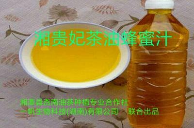 湖南省湘潭市湘潭县湘贵妃山茶油蜂蜜汁 500ml