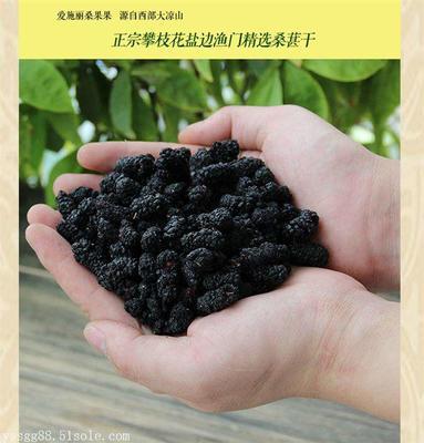 重庆九龙坡区攀枝花黑桑葚 2 - 3cm