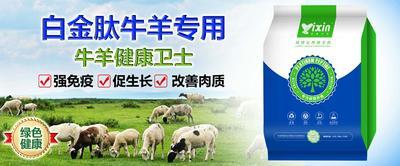 河南省郑州市惠济区牛羊促生长添加剂
