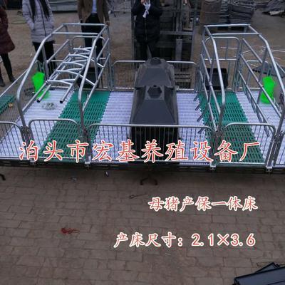 河北省沧州市泊头市母猪产床
