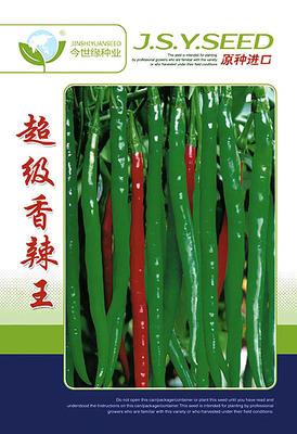 安徽省宿州市埇桥区线椒种子 98.0% 原种