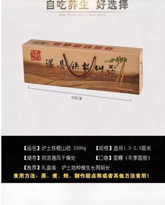 河南省焦作市温县垆土铁棍山药 50~70cm