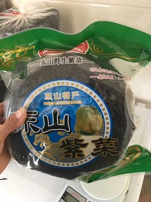 福建省漳州市东山县东山紫菜