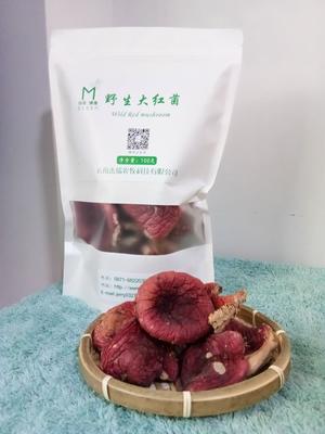云南省普洱市思茅区干红菇 袋装 1年