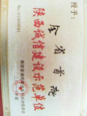 陕西省渭南市富平县京欣西瓜 无籽 1茬 8成熟 1斤打底