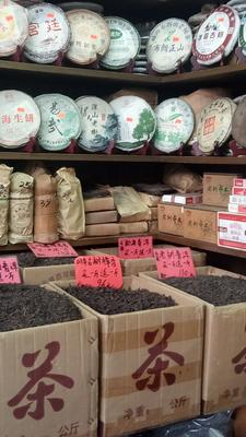 广东省广州市越秀区老树普洱 散装 一级