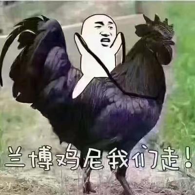 安徽省阜阳市阜南县普通小麦