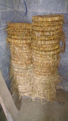 湖南省湘西土家族苗族自治州吉首市菜枯