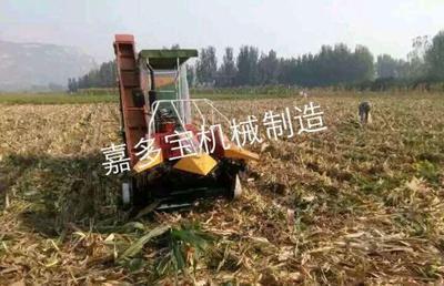 山东省济宁市嘉祥县背负玉米收割机