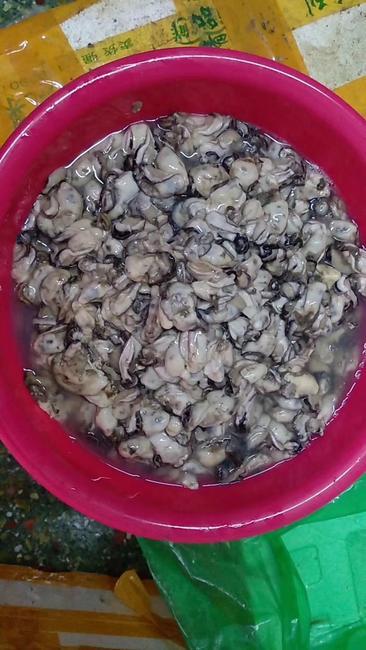 珠海生蚝 人工殖养 0.1-0.9只/公斤