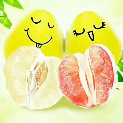 广东省梅州市五华县红心柚 2斤以上