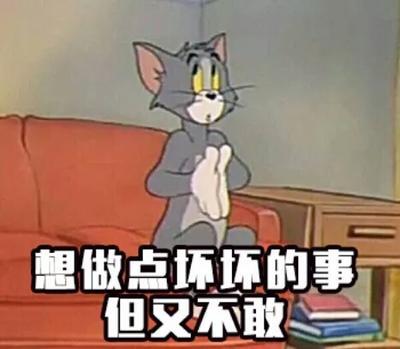 云南省西双版纳傣族自治州勐腊县西双版纳小耳朵猪