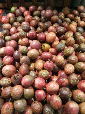 云南省西双版纳傣族自治州景洪市紫红色百香果 50 - 60克