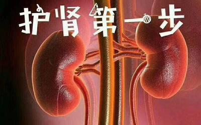 青海省西宁市城东区鹿鞭