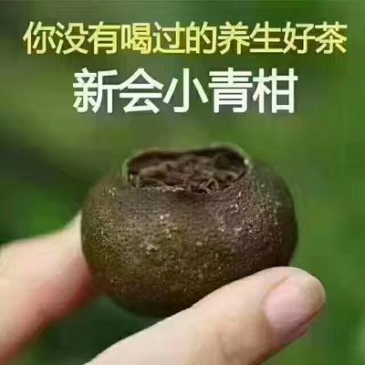 广东省江门市新会区柑潽茶 袋装 一级