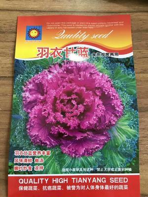 江苏省宿迁市沭阳县KAG-703 0.5~1龙8国际官网官方网站