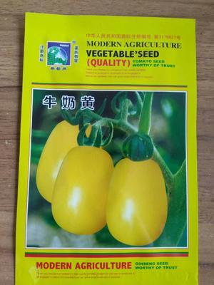 江苏省宿迁市沭阳县海泽拉番茄种子 99% 良种(亲本)
