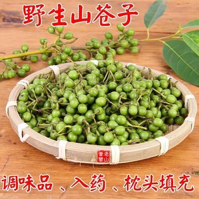 贵州省遵义市赤水市野生山胡椒