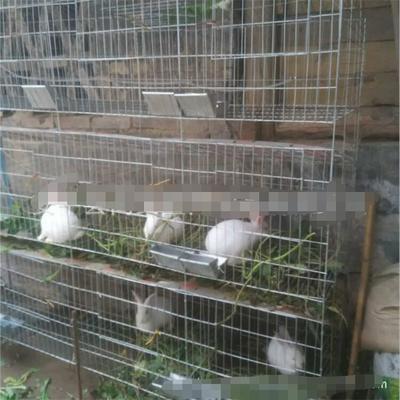 山西省大同市城区兔笼