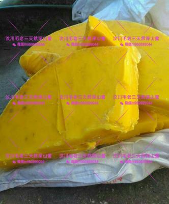 四川省阿坝藏族羌族自治州汶川县蜂蜡 12-18个月