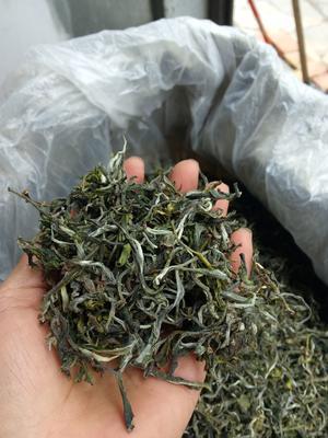 云南省普洱市宁洱哈尼族彝族自治县龙塘普洱茶 散装 一级