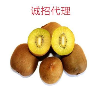 陕西省渭南市澄城县徐香猕猴桃 60~100克