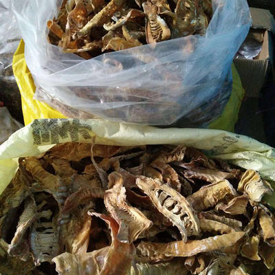 广西壮族自治区桂林市永福县竹笋干 散装 1年以上