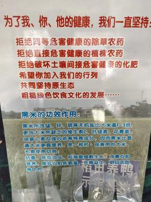 广西壮族自治区北海市合浦县有机黑米