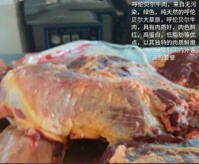 内蒙古自治区呼伦贝尔市额尔古纳市牛肉类 生肉