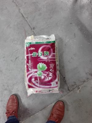 安徽省滁州市明光市长粒香大米 非有机大米 早稻 一等品