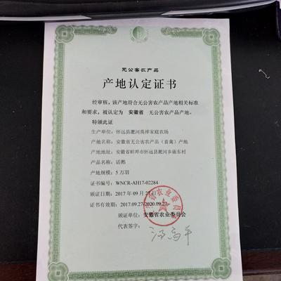 安徽省蚌埠市怀远县鹅肉类 新鲜