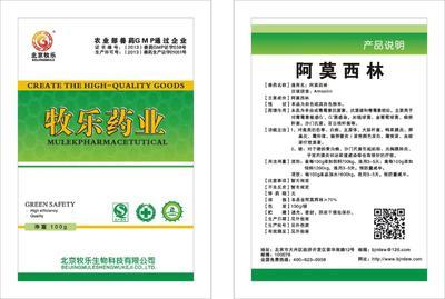 河南省郑州市金水区阿莫西林