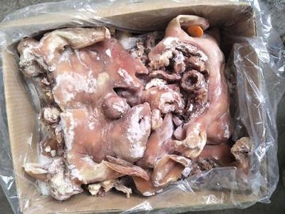 内蒙古自治区赤峰市红山区内蒙古绵羊 80-110斤
