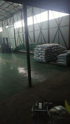 黑龙江省哈尔滨市五常市稻花香大米 绿色食品 晚稻 一等品