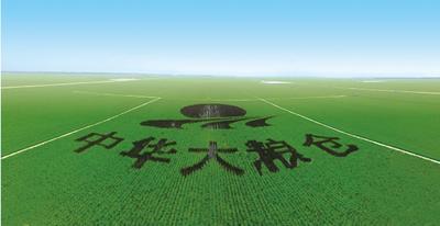 黑龙江省佳木斯市抚远县长粒香大米 非有机大米 晚稻 一等品